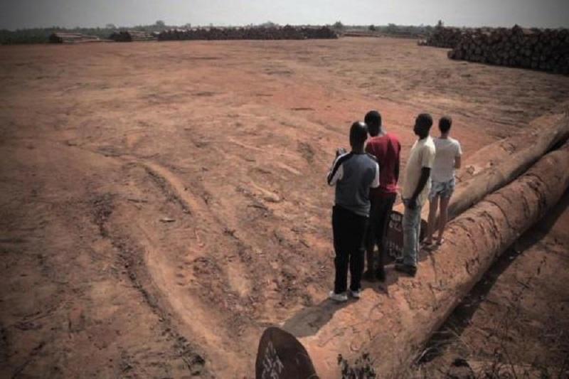 Land Rights Revolution in Liberia